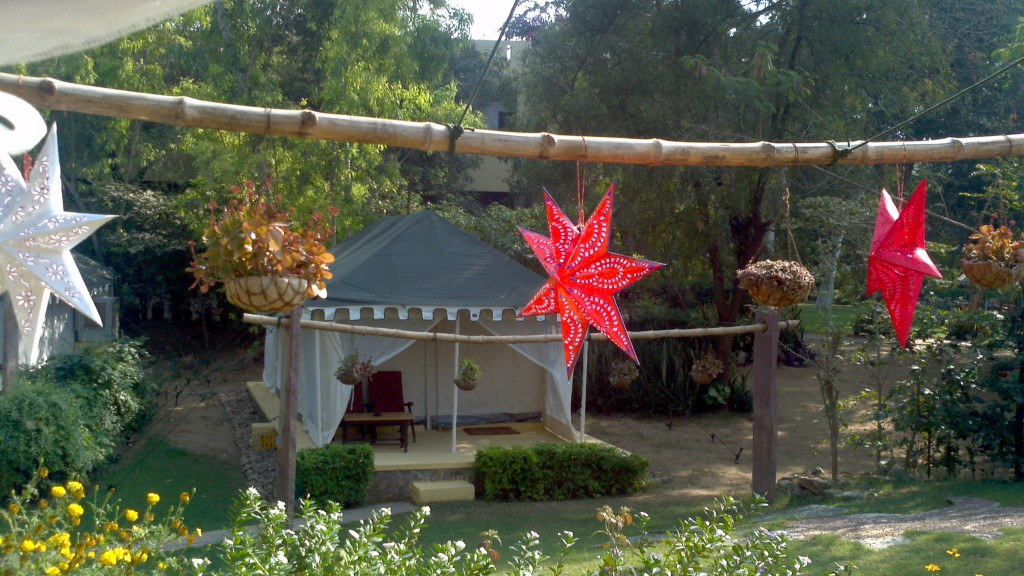 Christmas stars from Kerala decorating our tiger camp on Christmas Day