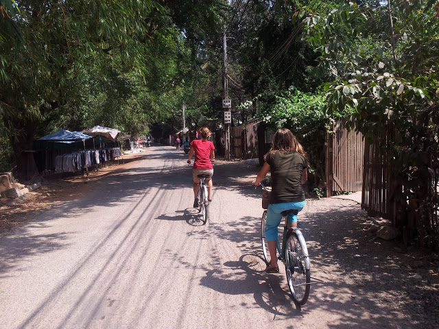 Riding bikes in Siem Reap